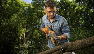 DMP Tree Service employee trimming a tree